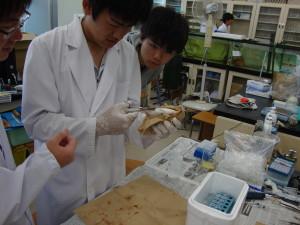 中島先生との実験④