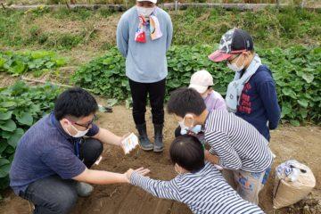【子ども農園】子ども農園プロジェクト